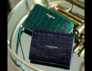 Exotic Croco small leather goods